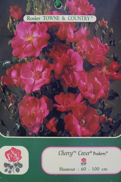ROSIER Cherry Cover®