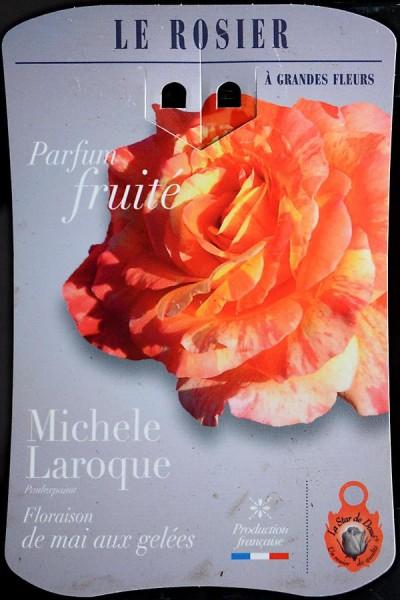 ROSIER Michèle Laroque ®