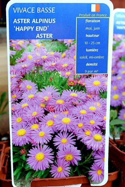 ASTER Happy End