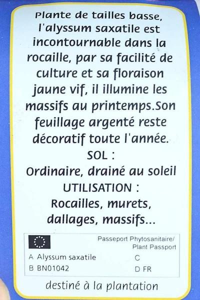 ALYSSE des Rochers