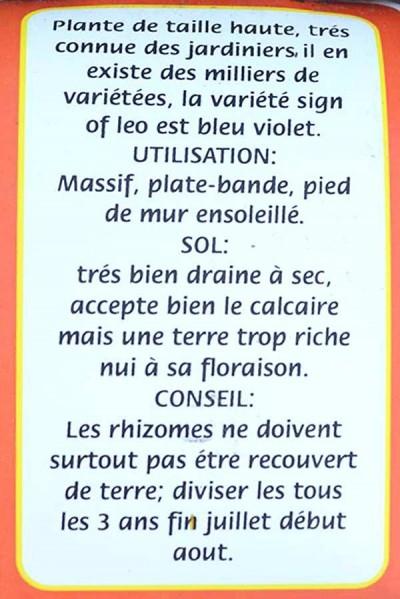 IRIS 'Sign of Léo'